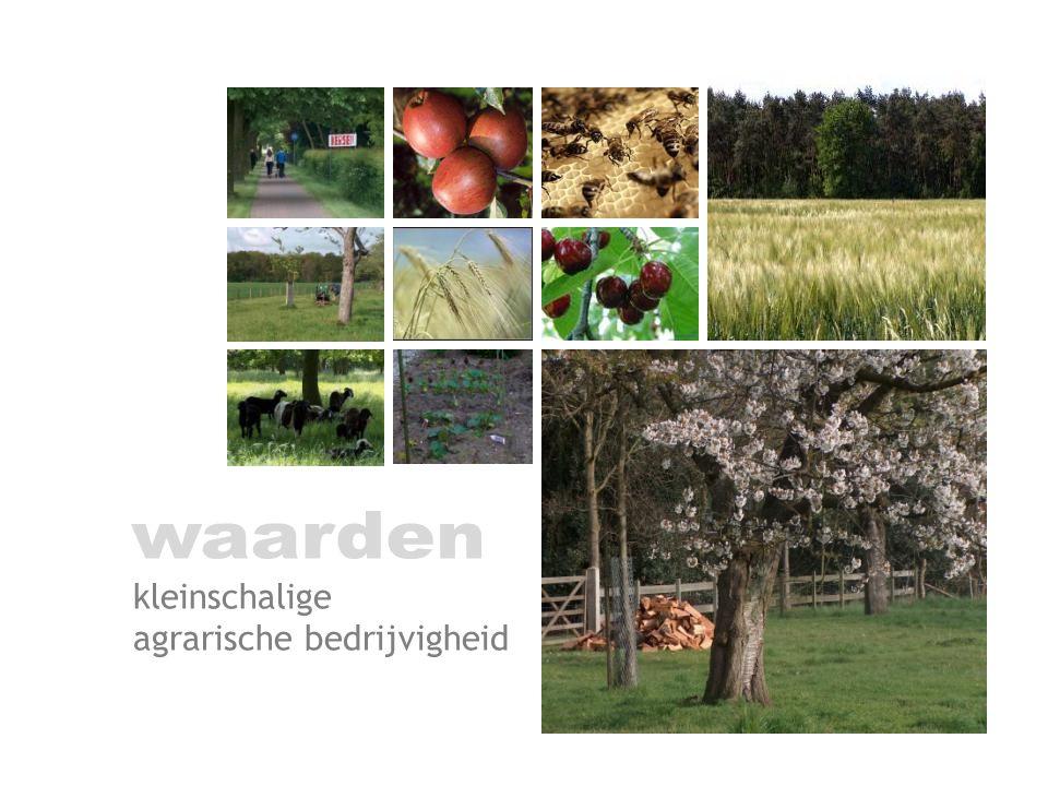 kleinschalige agrarische bedrijvigheid
