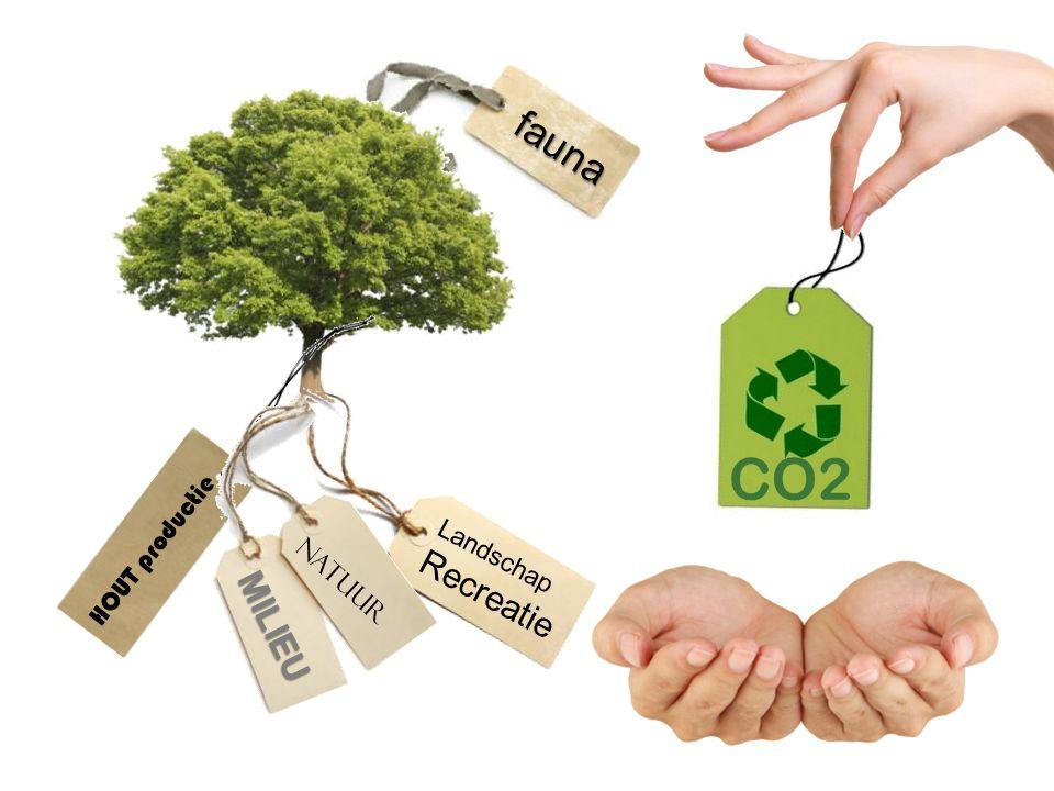HOUT productie fauna natuur Landschap Recreatie MILIEU CO2