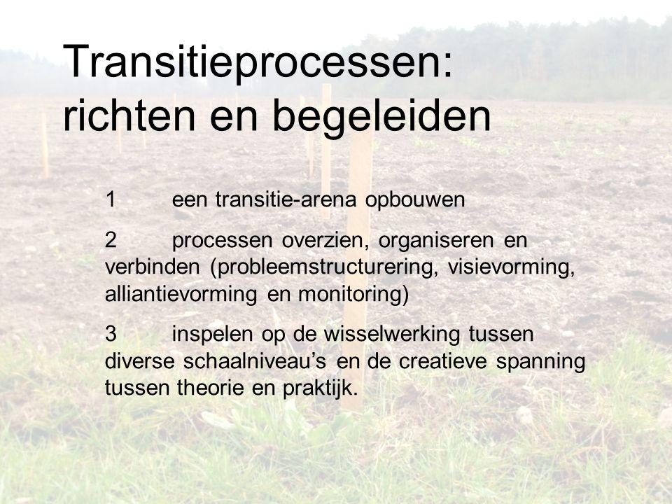 1 een transitie-arena opbouwen 2 processen overzien, organiseren en verbinden (probleemstructurering, visievorming, alliantievorming en monitoring) 3 inspelen op de wisselwerking tussen diverse schaalniveau's en de creatieve spanning tussen theorie en praktijk.