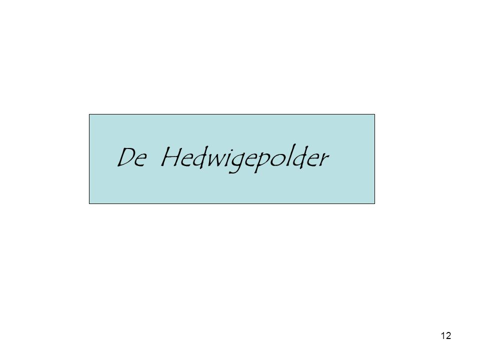 12 De Hedwigepolder