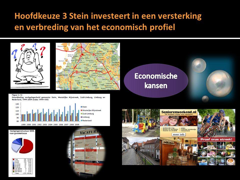 Hoofdkeuze 3 Stein investeert in een versterking en verbreding van het economisch profiel