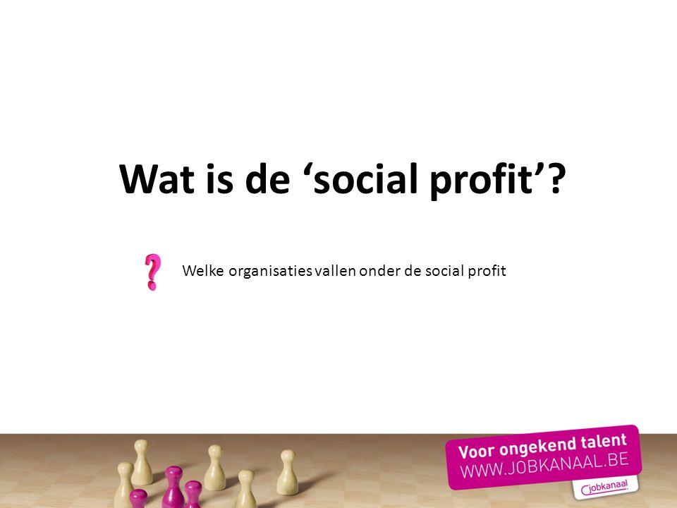 Wat is de 'social profit'? Welke organisaties vallen onder de social profit