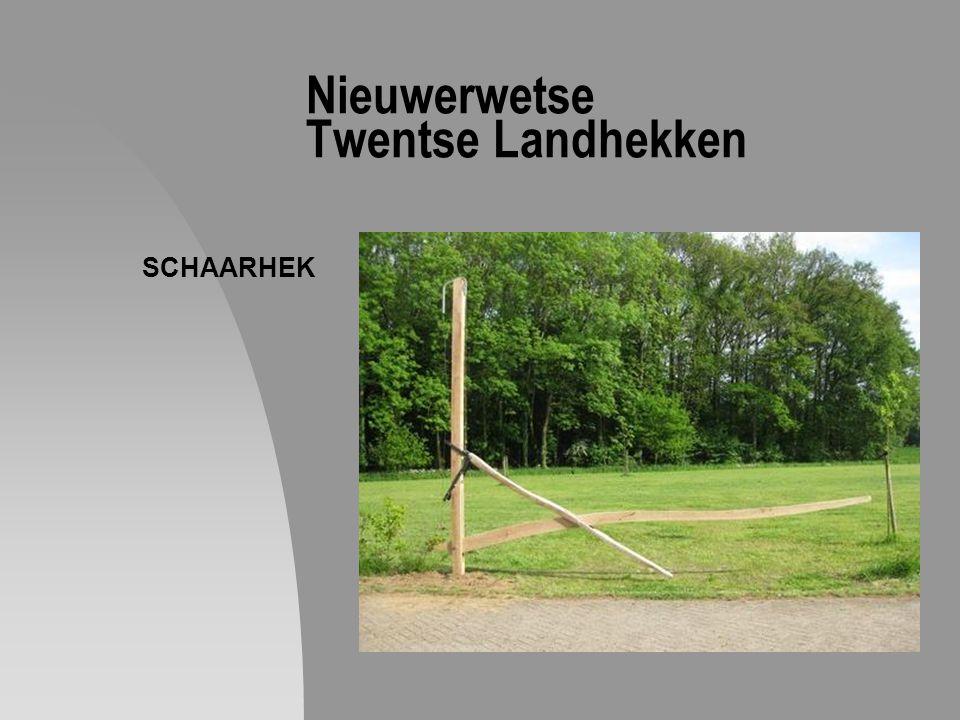 Nieuwerwetse Twentse Landhekken SCHAARHEK