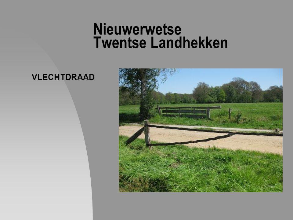 Nieuwerwetse Twentse Landhekken VLECHTDRAAD