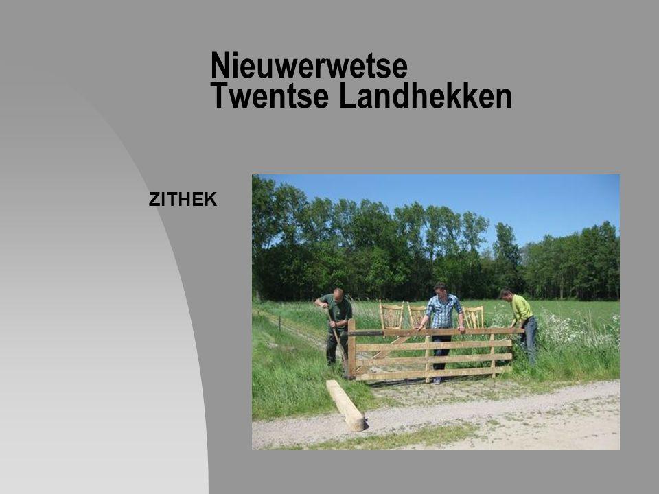 Nieuwerwetse Twentse Landhekken ZITHEK