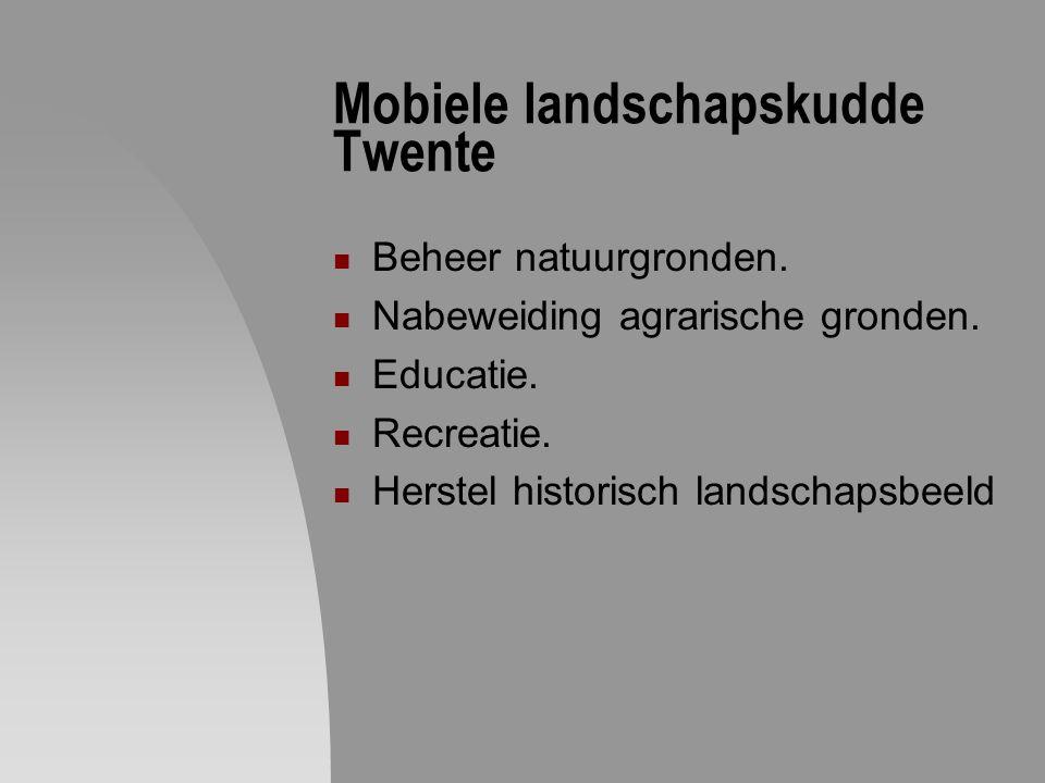 Mobiele landschapskudde Twente Beheer natuurgronden. Nabeweiding agrarische gronden. Educatie. Recreatie. Herstel historisch landschapsbeeld