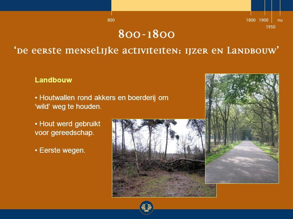 Landbouw Houtwallen rond akkers en boerderij om 'wild' weg te houden. Hout werd gebruikt voor gereedschap. Eerste wegen.