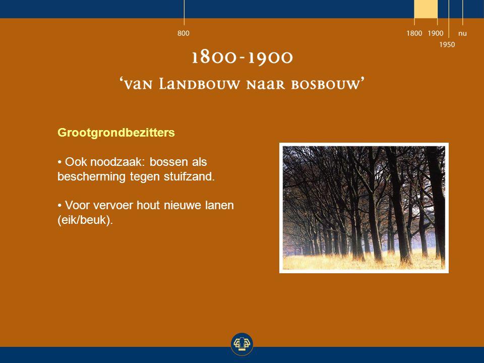 Grootgrondbezitters Ook noodzaak: bossen als bescherming tegen stuifzand. Voor vervoer hout nieuwe lanen (eik/beuk).