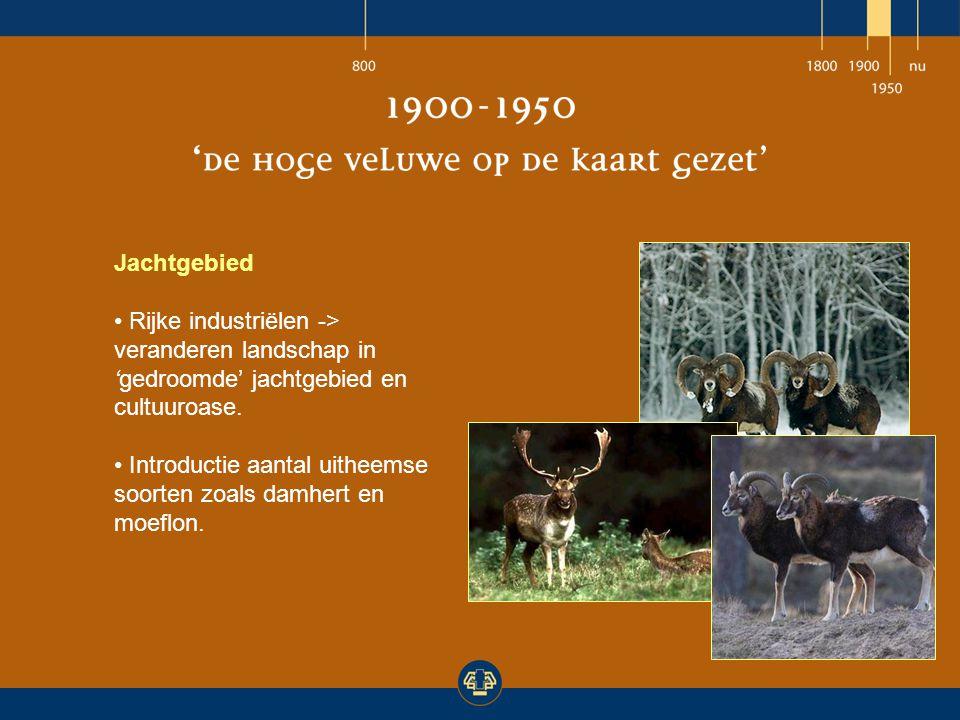 Jachtgebied Rijke industriëlen -> veranderen landschap in 'gedroomde' jachtgebied en cultuuroase. Introductie aantal uitheemse soorten zoals damhert e
