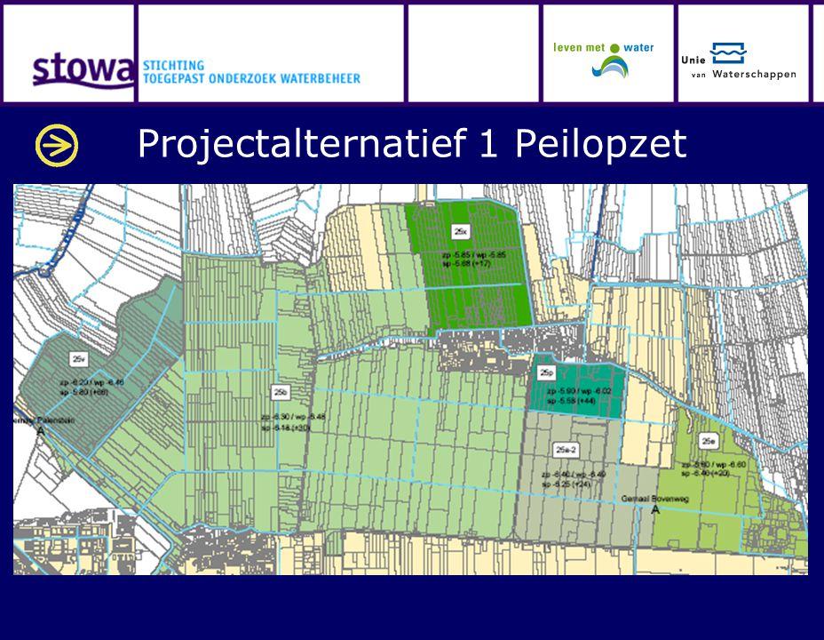 Projectalternatief 1 Peilopzet