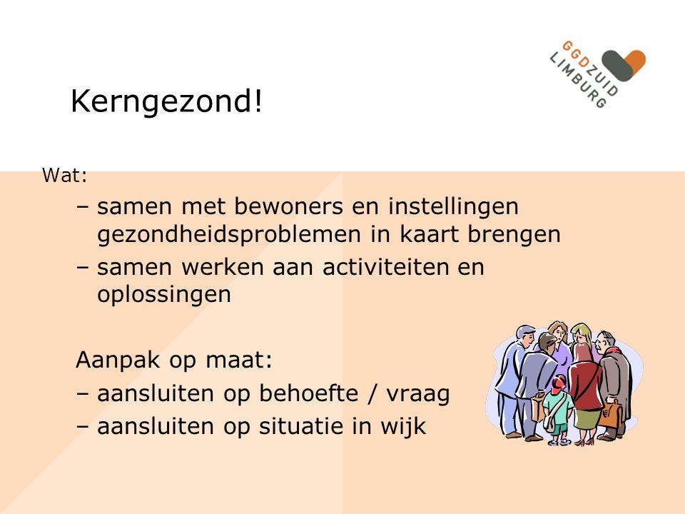 Kerngezond! Wat: –samen met bewoners en instellingen gezondheidsproblemen in kaart brengen –samen werken aan activiteiten en oplossingen Aanpak op maa