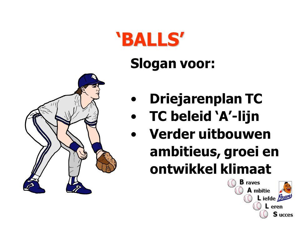 Evaluatie BALLS 2008 Globaal gebruikt hulpmiddel t.b.v.