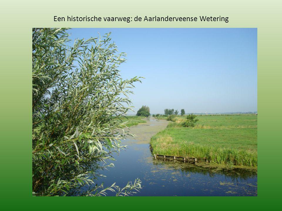 Een historische vaarweg: de Aarlanderveense Wetering