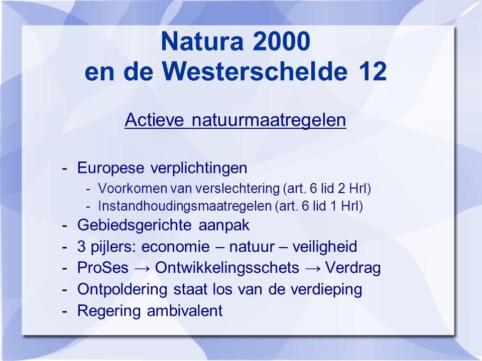 Natura 2000 en de Westerschelde 12 Actieve natuurmaatregelen -Europese verplichtingen -Voorkomen van verslechtering (art.
