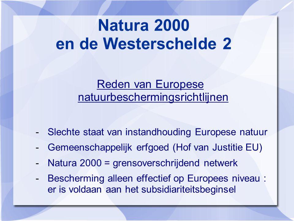 Natura 2000 en de Westerschelde 2 Reden van Europese natuurbeschermingsrichtlijnen -Slechte staat van instandhouding Europese natuur -Gemeenschappelijk erfgoed (Hof van Justitie EU) -Natura 2000 = grensoverschrijdend netwerk -Bescherming alleen effectief op Europees niveau : er is voldaan aan het subsidiariteitsbeginsel