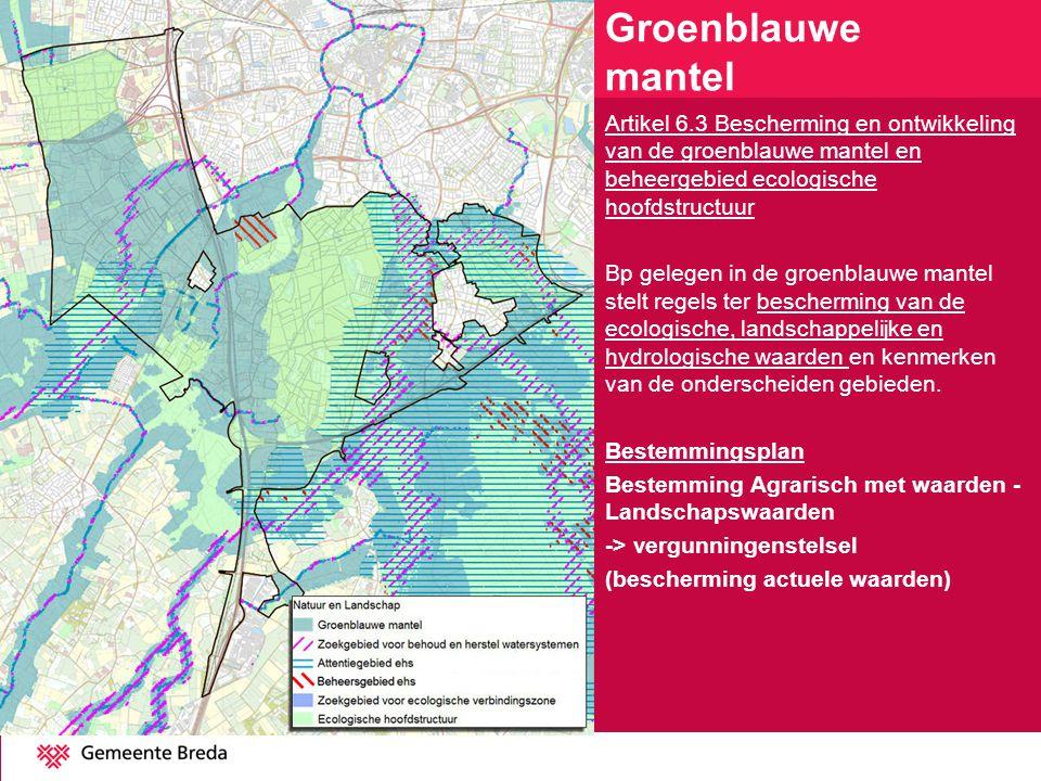 Artikel 6.3 Bescherming en ontwikkeling van de groenblauwe mantel en beheergebied ecologische hoofdstructuur Bp gelegen in de groenblauwe mantel stelt