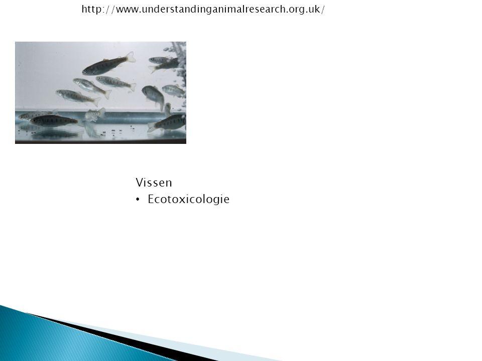 http://www.understandinganimalresearch.org.uk/ Vissen Ecotoxicologie