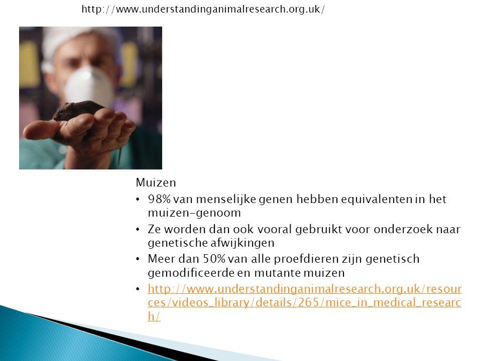 http://www.understandinganimalresearch.org.uk/ Muizen 98% van menselijke genen hebben equivalenten in het muizen-genoom Ze worden dan ook vooral gebru