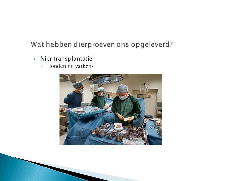 Nier transplantatie ◦ Honden en varkens