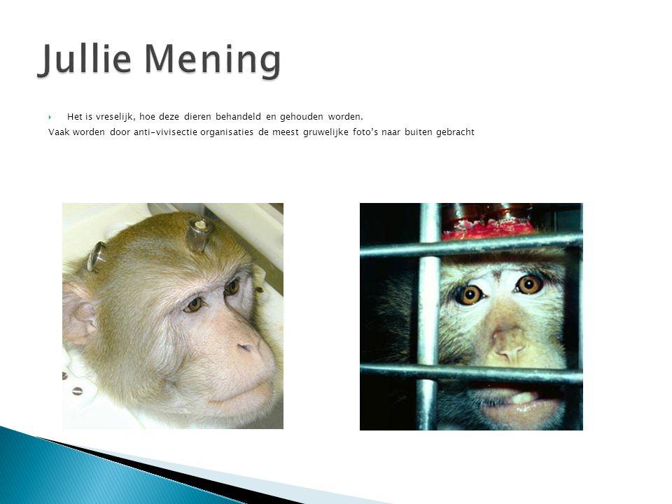 Vaak worden door anti-vivisectie organisaties de meest gruwelijke foto's naar buiten gebracht