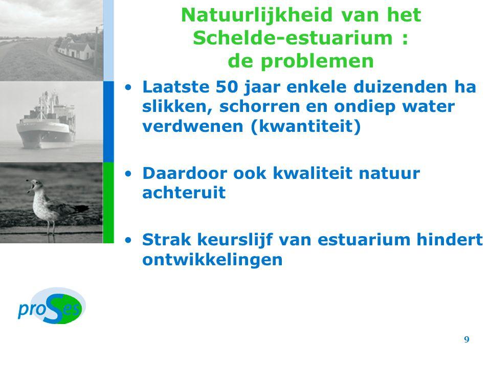 Natuurlijkheid van het Schelde-estuarium : de besluiten Leidend principe: ruimte geven aan de rivier Realisatie van het basispakket o.a.: –wettelijke bescherming Vlakte van de Raan –vergroting Zwin met 120 ha –aanleg van doorlaatmiddel in Bathse polder –verbeteren waterhuishouding in Braakmankreek –herinrichten Durme en haar vallei –omvorming Kalkense Meersen tot wetland –natuurontwikkeling in GOG's (Sigmaplan) –natuurontwikkeling onafhankelijk van Sigmaplan 10