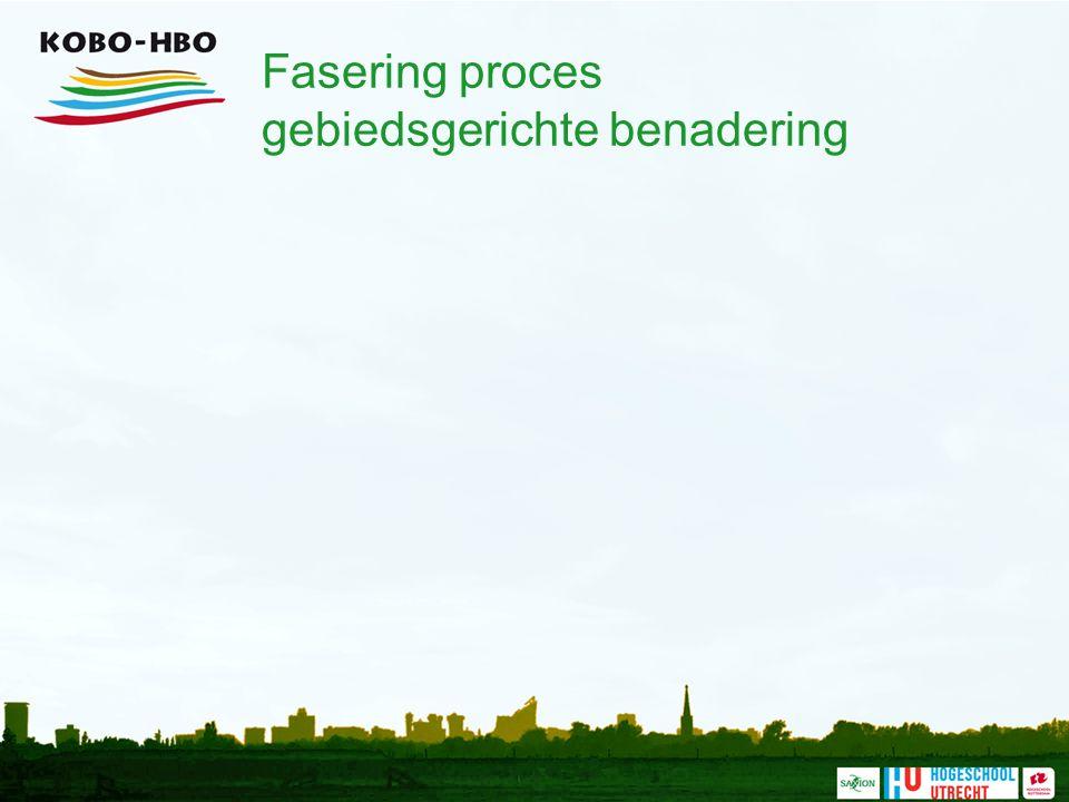 Fasering proces gebiedsgerichte benadering