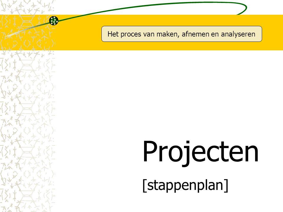 Het proces van maken, afnemen en analyseren Projecten [stappenplan]