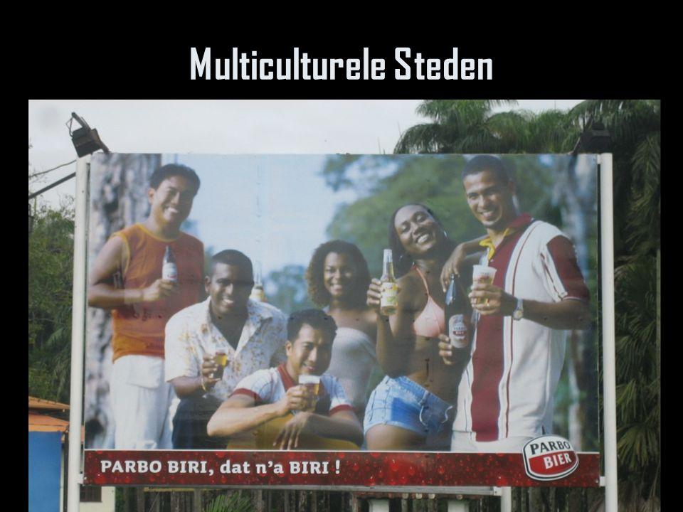 Multiculturele Steden