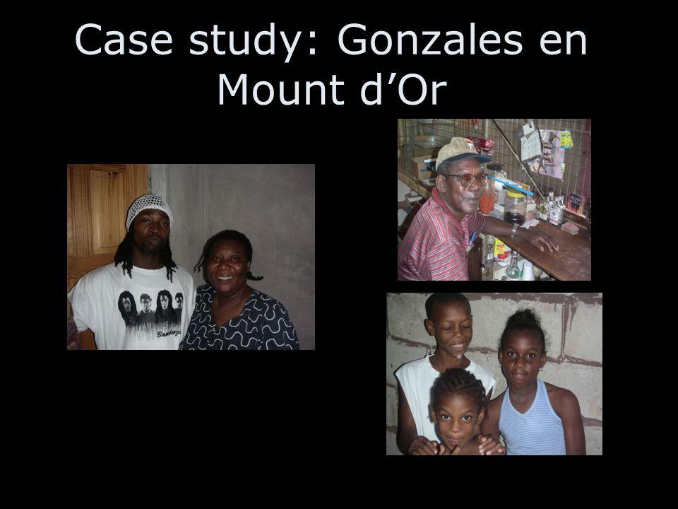Case study: Gonzales en Mount d'Or