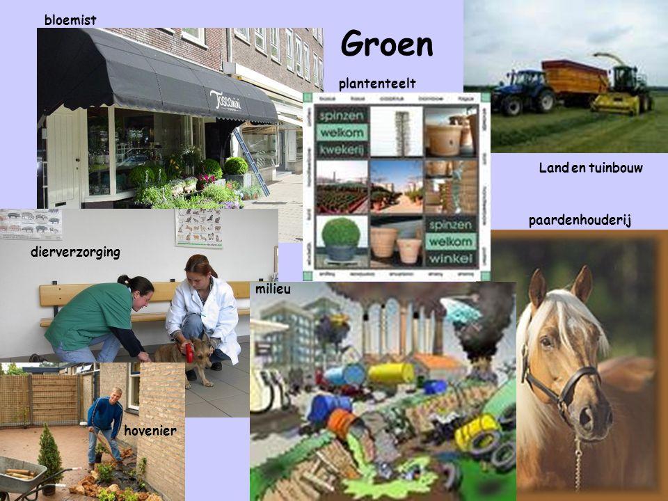 Groen bloemist Land en tuinbouw paardenhouderij milieu hovenier dierverzorging plantenteelt