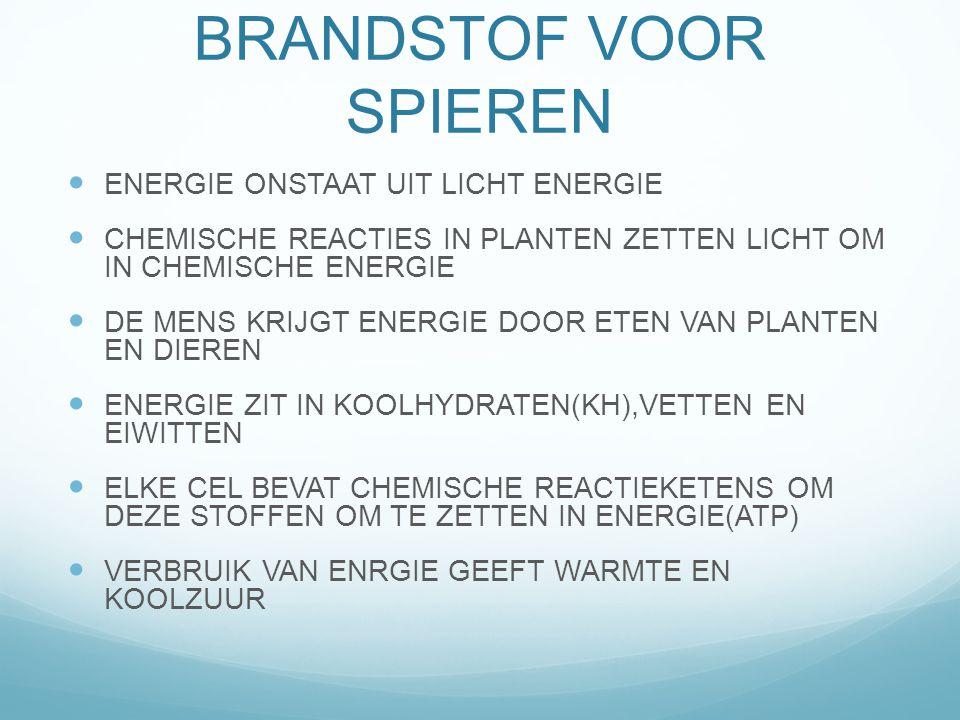 BRANSTOF VOOR SPIEREN EENHEID VAN ENERGIE IS KCALORIE PER DAG NODIG 2500-3000 KCAL.