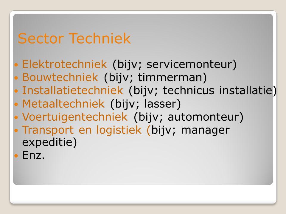 Sector Techniek Elektrotechniek (bijv; servicemonteur) Bouwtechniek (bijv; timmerman) Installatietechniek (bijv; technicus installatie) Metaaltechniek (bijv; lasser) Voertuigentechniek (bijv; automonteur) Transport en logistiek (bijv; manager expeditie) Enz.