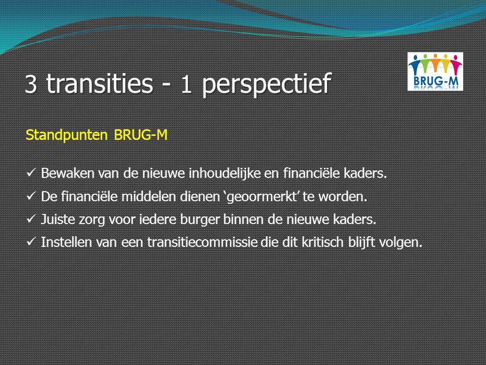 3 transities - 1 perspectief Standpunten BRUG-M Bewaken van de nieuwe inhoudelijke en financiële kaders. De financiële middelen dienen 'geoormerkt' te