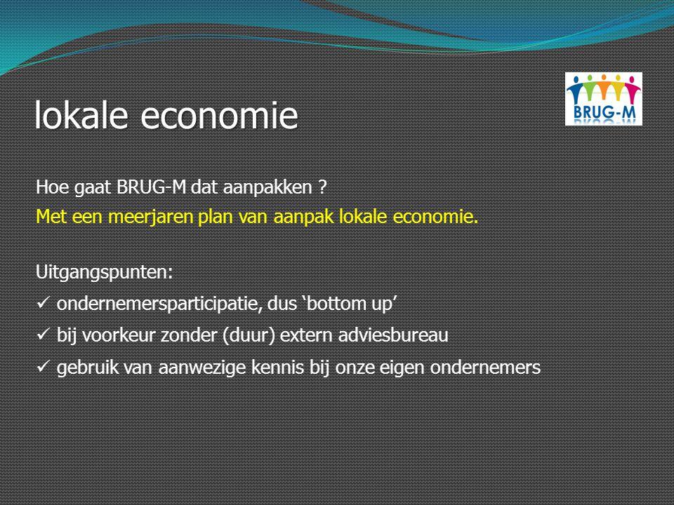 lokale economie Hoe gaat BRUG-M dat aanpakken ? Uitgangspunten: ondernemersparticipatie, dus 'bottom up' Met een meerjaren plan van aanpak lokale econ