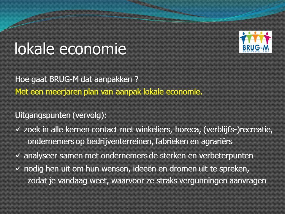 lokale economie Hoe gaat BRUG-M dat aanpakken ? Uitgangspunten (vervolg): zoek in alle kernen contact met winkeliers, horeca, (verblijfs-)recreatie, o