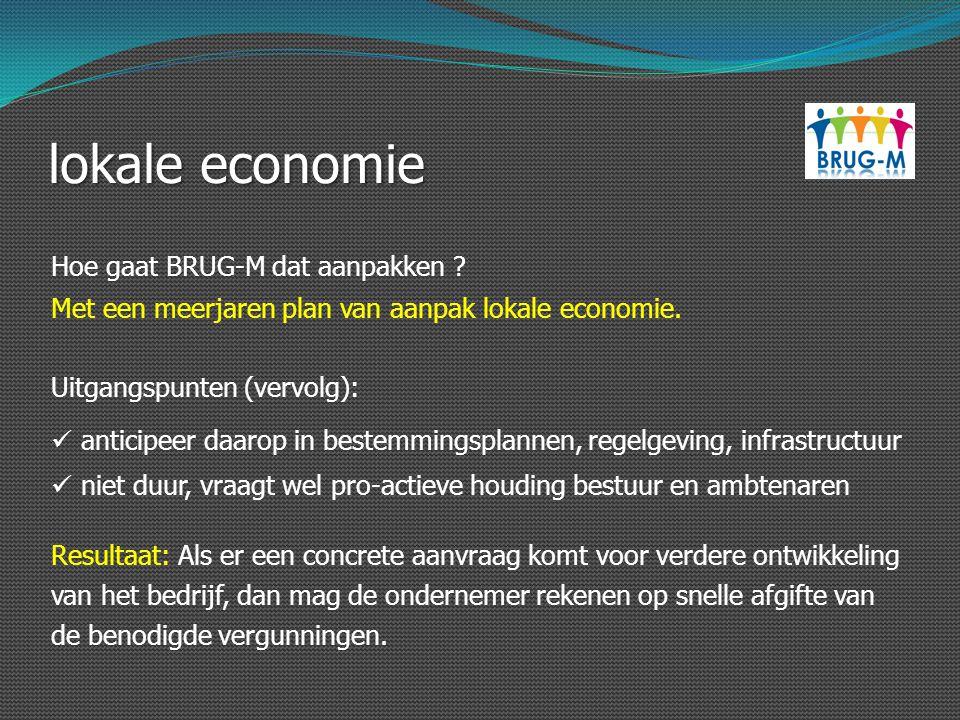lokale economie Hoe gaat BRUG-M dat aanpakken ? Uitgangspunten (vervolg): anticipeer daarop in bestemmingsplannen, regelgeving, infrastructuur niet du