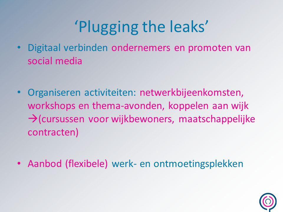 'Plugging the leaks' Digitaal verbinden ondernemers en promoten van social media Organiseren activiteiten: netwerkbijeenkomsten, workshops en thema-av