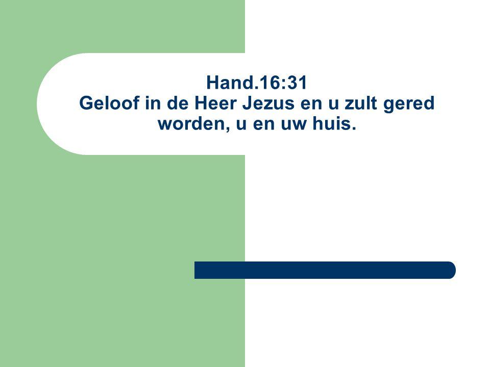 Hand.16:31 Geloof in de Heer Jezus en u zult gered worden, u en uw huis.