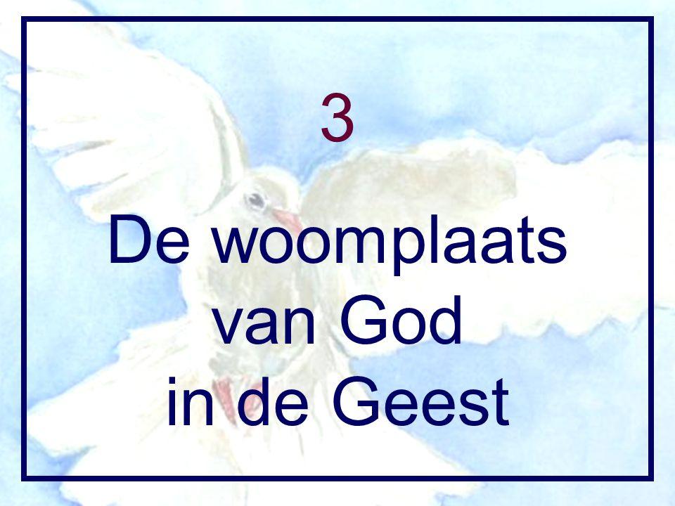 3 De woomplaats van God in de Geest