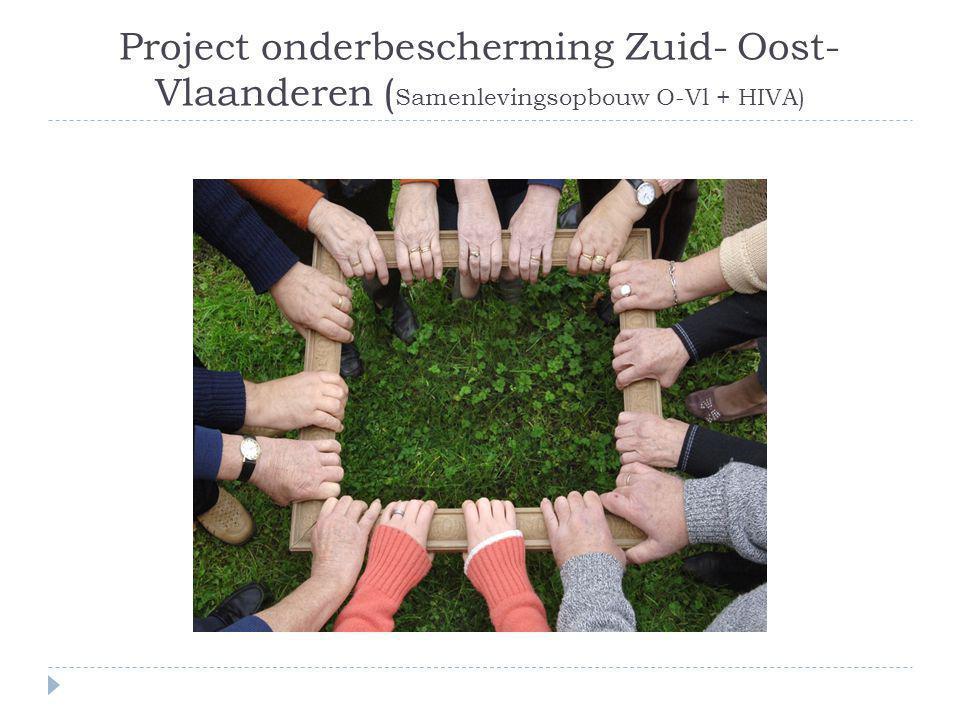 Project onderbescherming Zuid- Oost- Vlaanderen ( Samenlevingsopbouw O-Vl + HIVA)