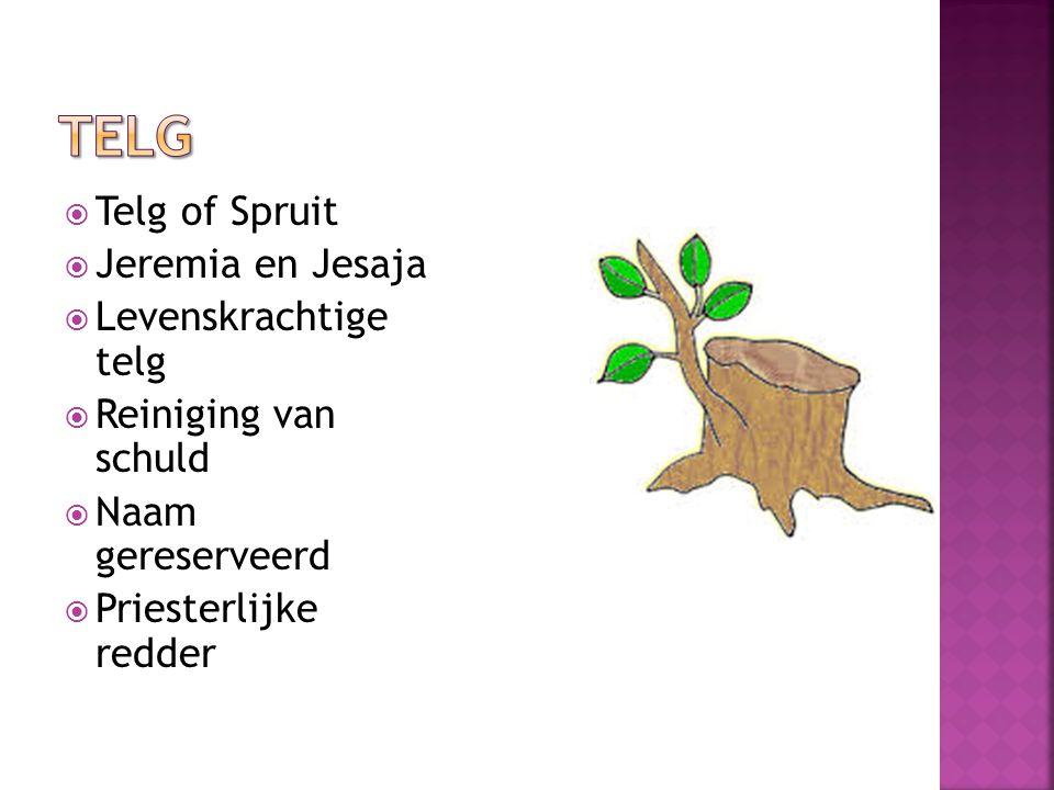  Telg of Spruit  Jeremia en Jesaja  Levenskrachtige telg  Reiniging van schuld  Naam gereserveerd  Priesterlijke redder