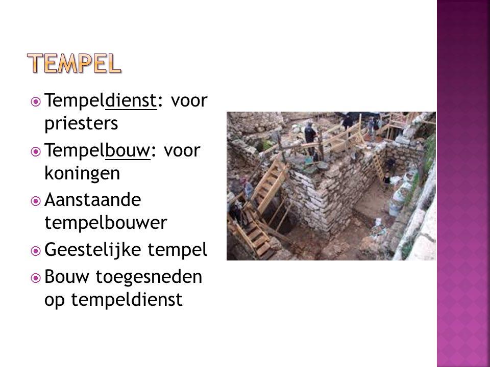  Tempeldienst: voor priesters  Tempelbouw: voor koningen  Aanstaande tempelbouwer  Geestelijke tempel  Bouw toegesneden op tempeldienst