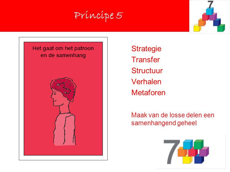 Strategie Transfer Structuur Verhalen Metaforen Maak van de losse delen een samenhangend geheel Principe 5