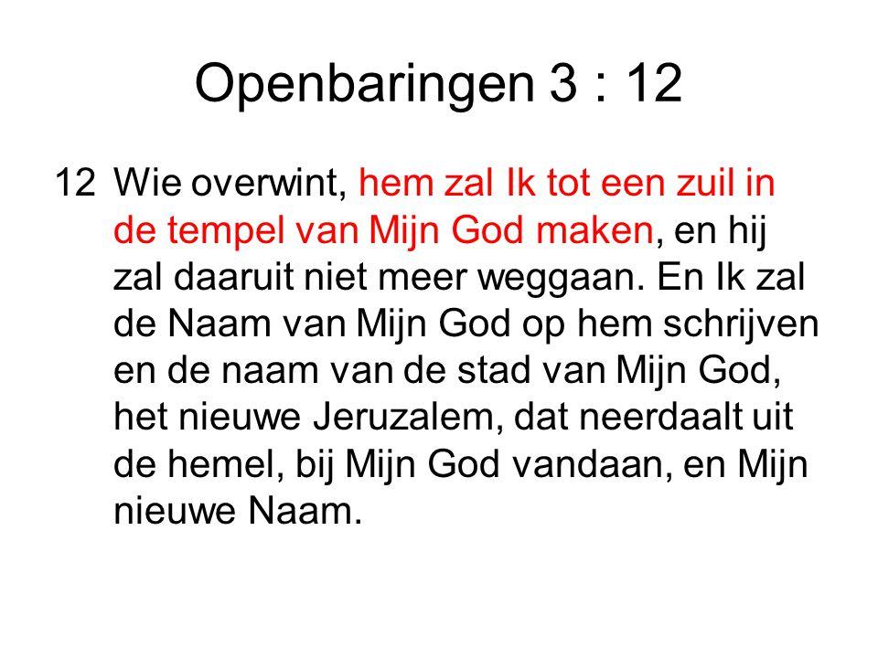 Openbaringen 3 : 12 12Wie overwint, hem zal Ik tot een zuil in de tempel van Mijn God maken, en hij zal daaruit niet meer weggaan.