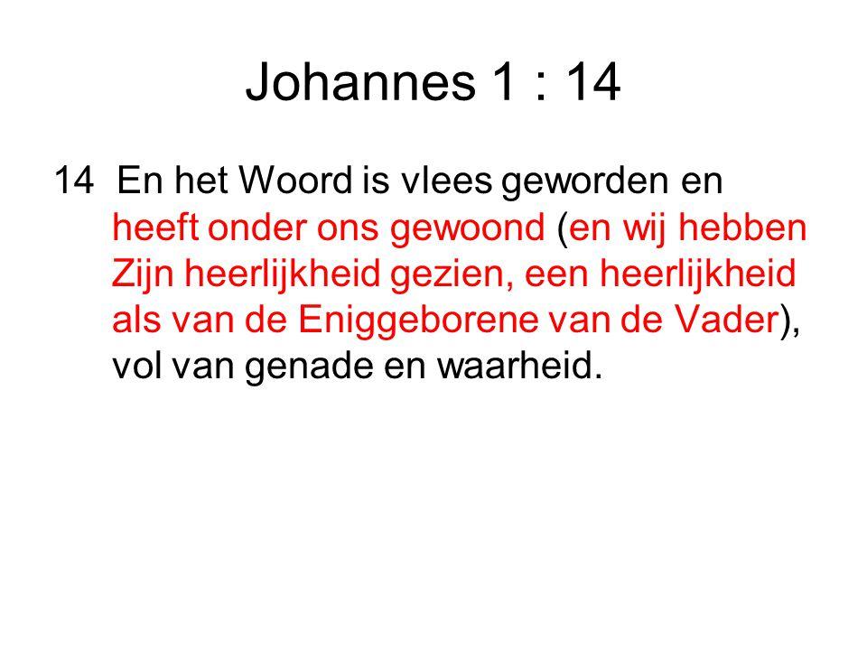 Johannes 1 : 14 14 En het Woord is vlees geworden en heeft onder ons gewoond (en wij hebben Zijn heerlijkheid gezien, een heerlijkheid als van de Eniggeborene van de Vader), vol van genade en waarheid.