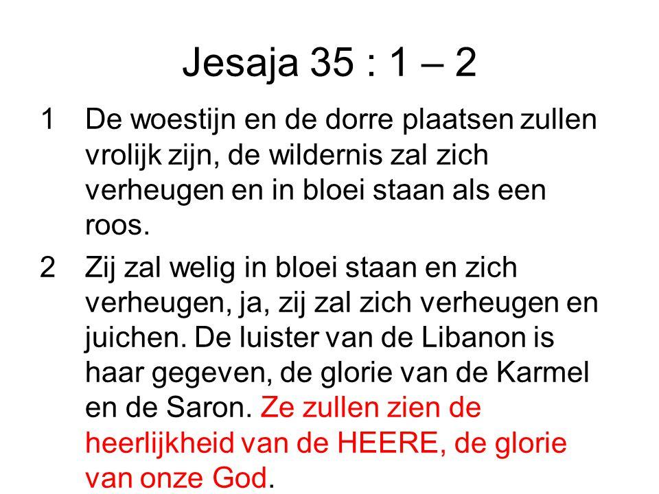 Jesaja 35 : 1 – 2 1De woestijn en de dorre plaatsen zullen vrolijk zijn, de wildernis zal zich verheugen en in bloei staan als een roos.