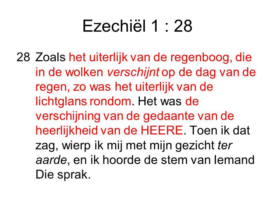 Ezechiël 1 : 28 28Zoals het uiterlijk van de regenboog, die in de wolken verschijnt op de dag van de regen, zo was het uiterlijk van de lichtglans rondom.