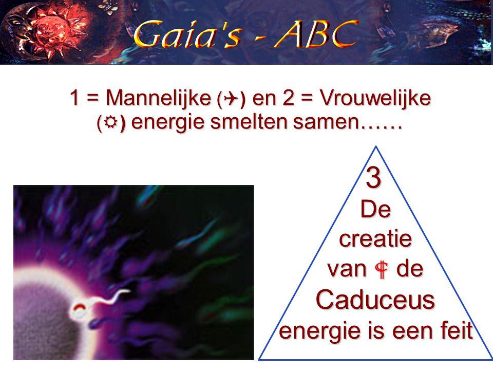 1 = Mannelijke (  en 2 = Vrouwelijke (  ) energie smelten samen…… 1 = Mannelijke (  ) en 2 = Vrouwelijke (  ) energie smelten samen…… De creatie van  de Caduceus energie is een feit 3