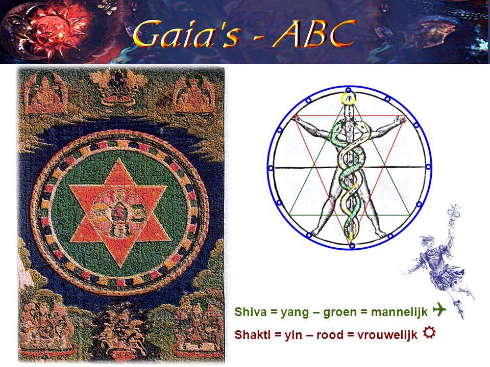  Shiva = yang – groen = mannelijk   Shakti = yin – rood = vrouwelijk 