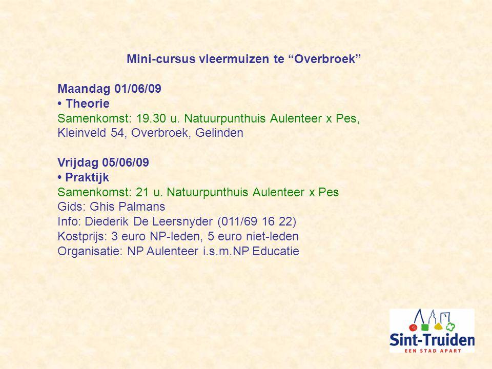 Mini-cursus vleermuizen te Overbroek Maandag 01/06/09 Theorie Samenkomst: 19.30 u.
